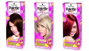 Palette - Color & Gloss -  szampon koloryzujący