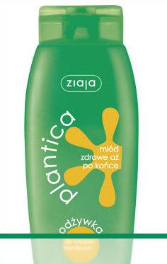 Plantica - miód - odżywka do włosów łamliwych i z rozdwojonymi końcówkami
