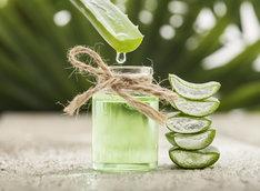 Aloes do picia jest naturalnym lekarstwem, które wspomaga odchudzanie