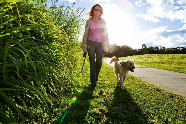 7. Sposób chodzenia a zdrowieW trakcie spaceru wszystkie partie naszego ciała muszą być ze sobą dobrzezsynchronizowane. Ogromne znaczenie ma tu ruch ramion, bioder, a także odpowiednieukładanie stopy. Drobne nieprawidłowości występujące w trakcie poruszania się mogąwywierać niekorzystny wpływ na stawy i mięśnie.
