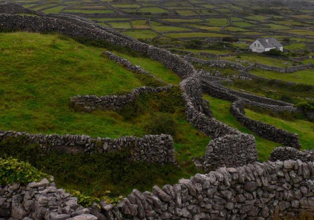 Labirynty utworzone z kamiennych murków na zielonej murawie to najbardziej charakterystyczny widok na Aranach. Pierwsi osadnicy musieli zaadaptować kamieniste podłoże, wydobywając kamienie i układając je w murki chroniące poletka przed wiatrem.